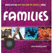 Families: Book 5 in the Can You Find My Love? Series