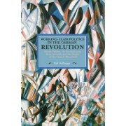Working Class Politics in the German Revolution by Ralf Hoffrogge