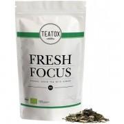 Teatox Fresh Focus Gr