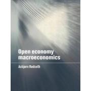 Open Economy Macroeconomics by Asbjorn Rodseth