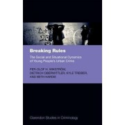 Breaking Rules: The Social and Situational Dynamics of Young People's Urban Crime by Per-Olof H. Wikstrom