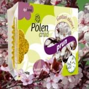 Apiland Polen crud de prun 250 gr