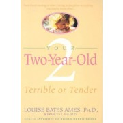 Your Two Year Old by L Ames