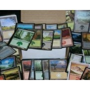 300 Assorted Magic: The Gathering MTG Basic Lands Cards by Wizards of the Coast [Toy] (English Manual)