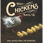 What Chickens Teach Us by Willow Creek Press