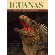 Iguanas by Allison C. Alberts