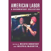 American Labor by M Dubofsky