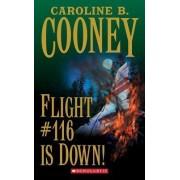 Flight #116 is down by Caroline B Cooney