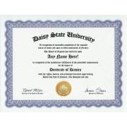 Daisy Daisies Degree: Custom Gag Diploma Doctorate Certificate (Funny Customized Joke Gift - Novelty Item)