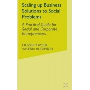 Scaling Up Business Solutions to Social Problems by Olivier Kayser
