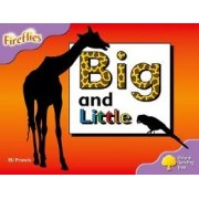 Oxford Reading Tree: Level 1+: Fireflies: Big and Little by Eli Francis
