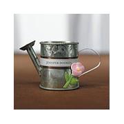 Miniature Metal Watering Cans