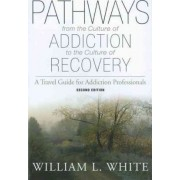 Pathways from the Culture of Addiction to the Culture of Recovery by William L White