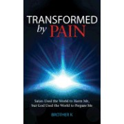 Transformed by Pain: Satan Used the World to Harm Me, But God Used the World to Prepare Me