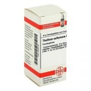DHU-Arzneimittel GmbH & Co. KG THALLIUM SULFURICUM D 6 Globuli 10 g
