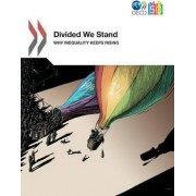 Divided We Stand by Organisation for Economic Co-Operation and Development