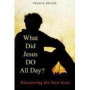 What Did Jesus DO All Day? by Felicia Silcox