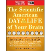 The Scientific American Day in the Life of Your Brain by Scientific American