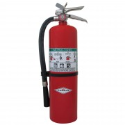 Amerex 10 LB Fire Extinguisher (Dry Chemical) - B456