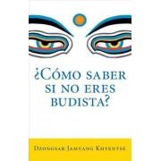 Como Saber Si No Eres Budista? (What Makes You Not a Buddhist) by Dzongsar Jamyang Khyentse