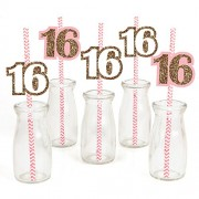 Sweet 16 - Birthday Party Straw Decor with Striped Paper Straws - Set of 24