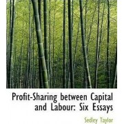 Profit-Sharing Between Capital and Labour by Sedley Taylor