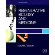 Regenerative Biology and Medicine by David L. Stocum