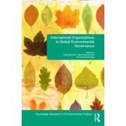 International Organizations in Global Environmental Governance by Frank Biermann