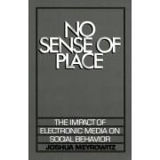 No Sense of Place by Joshua Meyrowitz