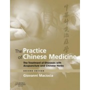 The Practice of Chinese Medicine by Giovanni Maciocia