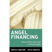 Angel Financing by Gerald A. Benjamin