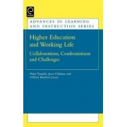 Higher Education and Working Life by P
