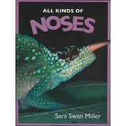 All Kinds of Noses by Sara Miller