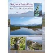Not Just a Pretty Place - Survival in Snowdonia by Huw Jenkins