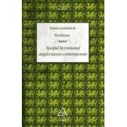 Spaţiul în romanul anglo-saxon contemporan.