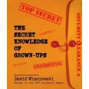 Secret Knowledge of Grownups by David Wisniewski