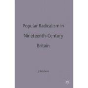 Popular Radicalism in Nineteenth-Century Britain by John Belchem