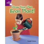 Rigby Star Guided Year 2 Purple Level: Grow Your Own Bean Plant Guided Reading Pack