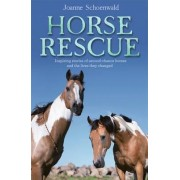 Horse Rescue: Inspiring Stories Of Second-Chance Horses AndThe Lives They Changed by Joanne Schoenwald