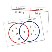 Learning Resources and Write-on Wipe-off Venn Diagram and T-chart Desk Mats
