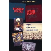 Hispanic Spaces, Latino Places by Daniel Arreola