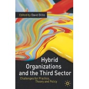 Hybrid Organizations and the Third Sector by David Billis