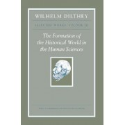 Wilhelm Dilthey: Selected Works: v. 3 by Wilhelm Dilthey