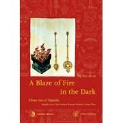 A Blaze of Fire in the Dark by Rig-'dzin rdo-rje