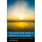 The Mental Health Needs of Children & Young People by Jane Padmore