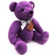 Rainbow Teddy Bear Rag doll - Purple 23cm