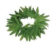 Beistle Company - Tropical Fern Leaf Headband