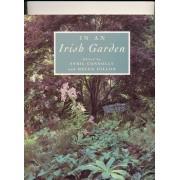 In An Irish Garden (In An Irish...) (Spanish Edition)