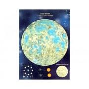 Poster Luna brilla en la oscuridad