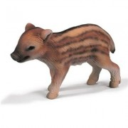 Young Boar, standing